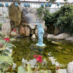 南宮五洲植物樂園用戶圖片