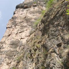 遮陽山旅遊風景區用戶圖片