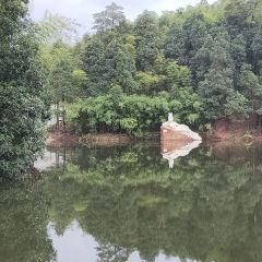촉남죽해 여행 사진