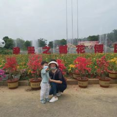 The Flower Expo Park of Bangbu User Photo