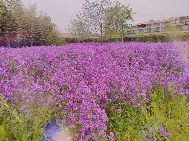 란링 국가 농업 공원