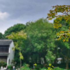 嗇園用戶圖片