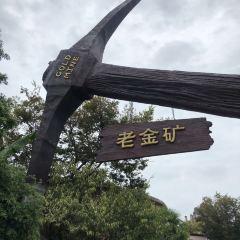 上海歡樂谷用戶圖片