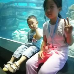 Jinyi City Aquarium User Photo