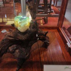 翡翠博物館用戶圖片