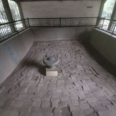 Museum of the Mausoleum of the King of Qin of Tang Dynasty User Photo