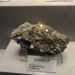 Hunan Provincial Museum of Geology User Photo