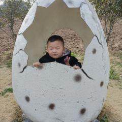 Hangzhou Konglong Meng Park User Photo