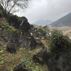 Jade Forest Scenic Area User Photo