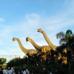 冷杉恐龍歡樂世界用戶圖片
