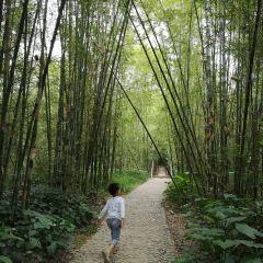 Xiangxi Castle Tourist Resort User Photo