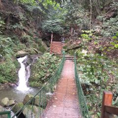 波爾登森林公園用戶圖片