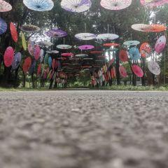 Digou Scenic Area User Photo