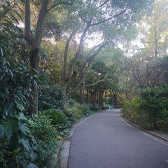 上海動物園用戶圖片