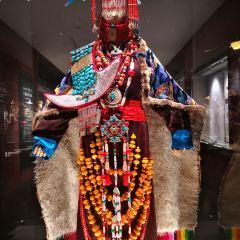 청해 티벳문화박물원 여행 사진