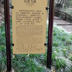 天台山風景區用戶圖片