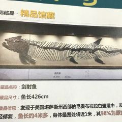 Zhengjia Natural Science Museum User Photo