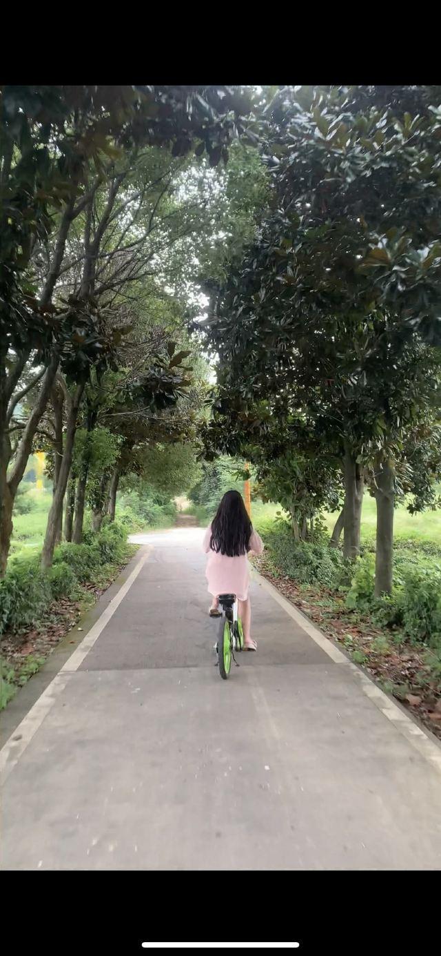 룽츠산(용지산) 자전거 공원