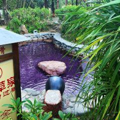 Xijiang (West River) Hot Spring Resort User Photo