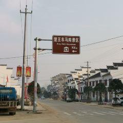 楚王車馬陣景區(熊家塚國家考古遺址公園)用戶圖片