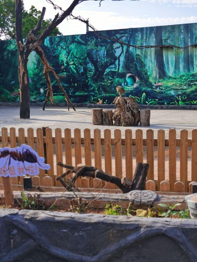 雲南野生動物園