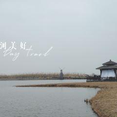 항저우 만 국립습지공원 여행 사진