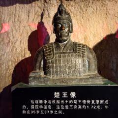 獅子山楚王陵用戶圖片