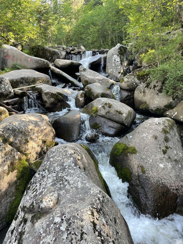 Yeliguan Forest Park