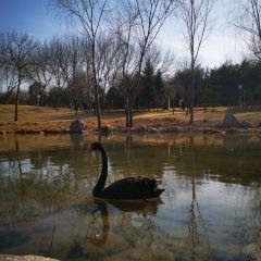 중국 조경박람원 여행 사진