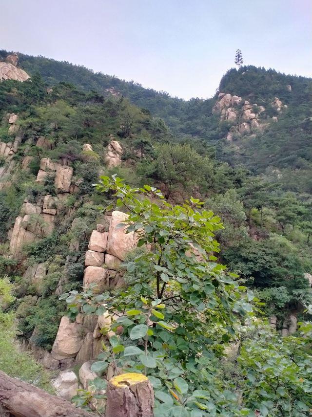 루상 신타이 신푸산