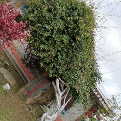 Jiuzhoulao Street User Photo