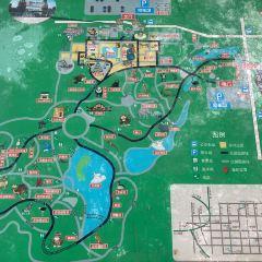 Xinma Kingdom Theme Park User Photo