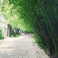 Bamboo Spring Village User Photo
