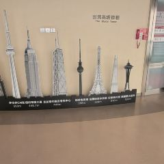 Tianfu Panda Tower User Photo