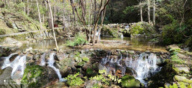 牛背梁国家森林公園