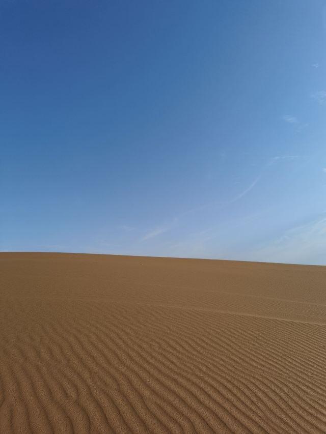 등격리사막 월량호