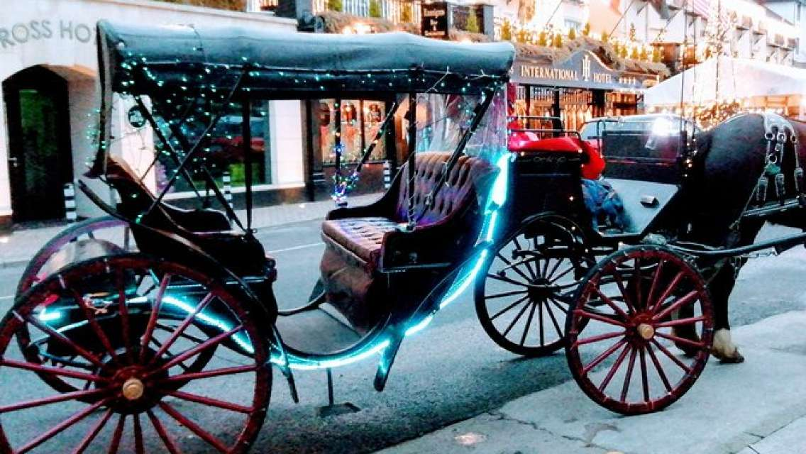 Christmas Horse&Carriage trip