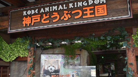 Kobe Animal Kingdom Ticket