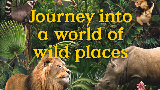 Singapore Zoo Admission Ticket (MUST RESERVE)