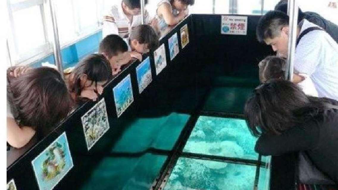 川平湾グラスボート遊覧 色とりどりの珊瑚や熱帯魚を満喫!<石垣島>
