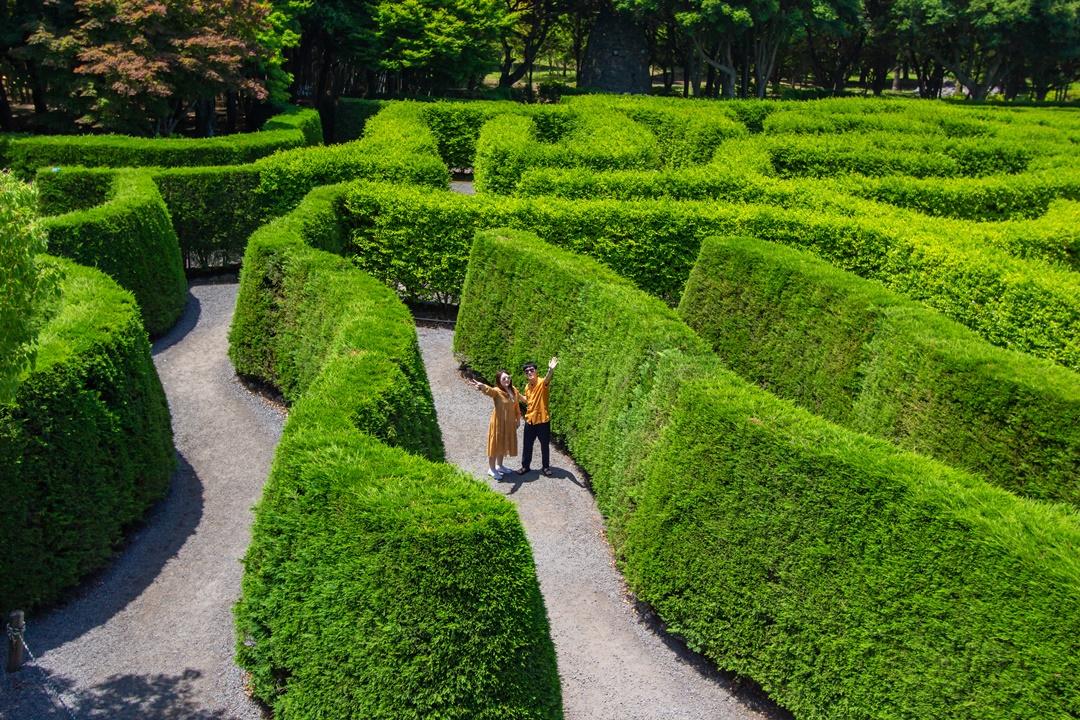 Jeju Maze Land Ticket