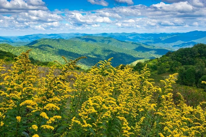 Half-Day Hike with Long Range Views from Asheville