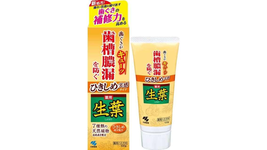 【日本直送,敏感牙齦必備】小林製藥生葉齒槽膿漏潔淨牙膏 (100g)