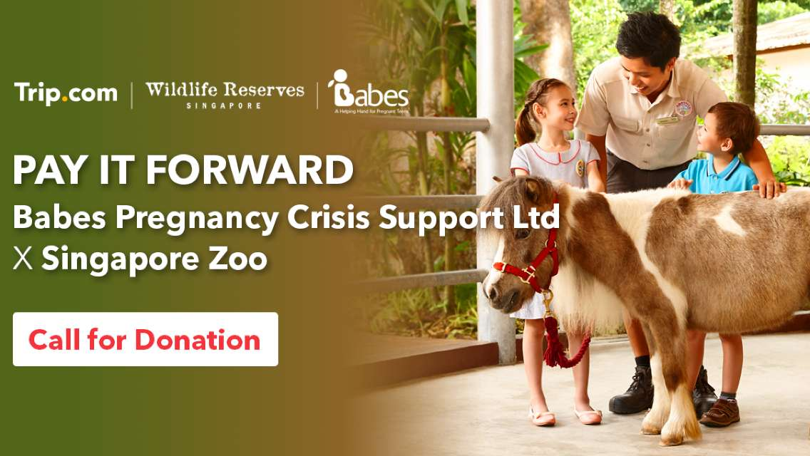Pay It Forward | Babes Pregnancy Crisis Support Ltd x Singapore Zoo