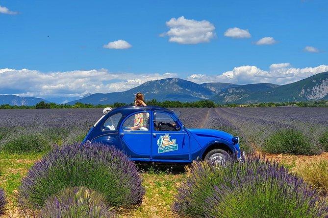 The lavender road in 2cv