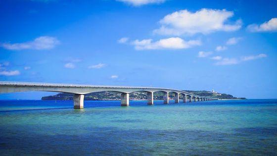 【GoTo35%OFF】沖縄美ら海水族館と古宇利島・万座毛・ナゴパイナップルコース