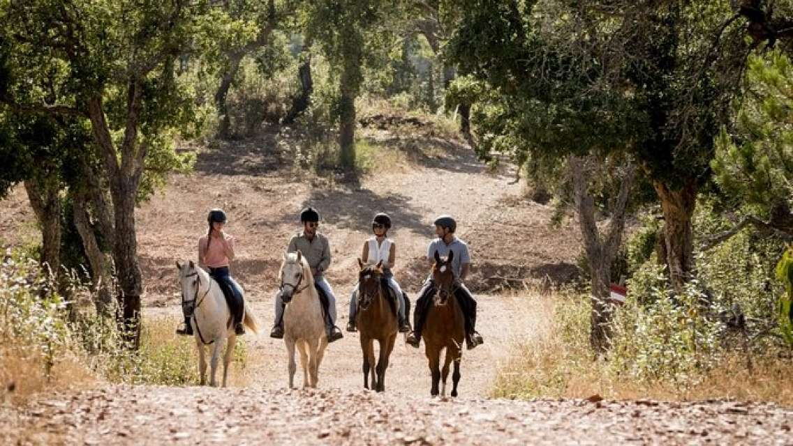 Horseback Riding in Montevideo, Uruguay