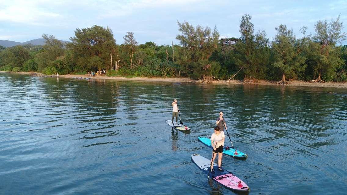マングローブSUP 空き時間に参加しやすい短時間コース♪手つかずの豊かな自然の中でパドルを漕いで海上散歩<石垣島>