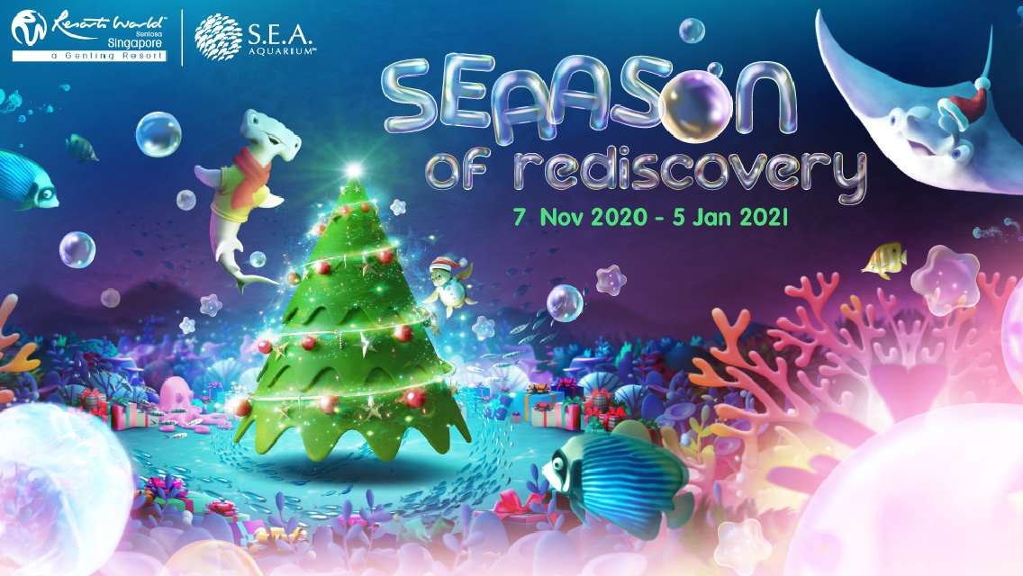 Christmas Promo   S.E.A. Aquarium™ One-Day Ticket - Advance reservation required