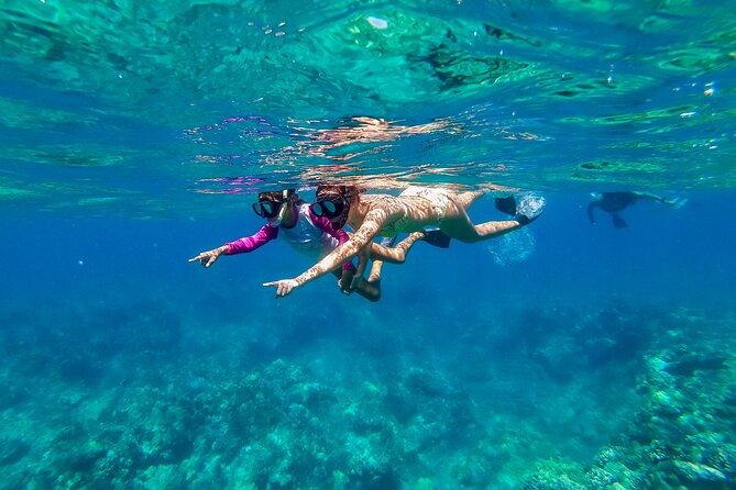 Big Island Snorkel Cruise Along Kohala Coast